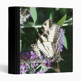 Carpeta de la mariposa de Swallowtail