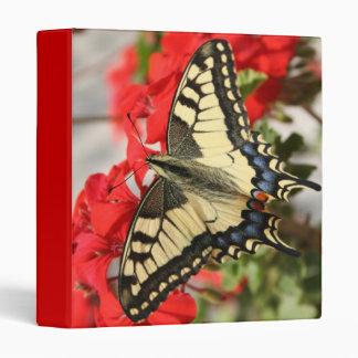 Carpeta de la mariposa de Swallowtail del anís