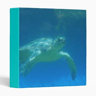 Carpeta de la nadada de la tortuga de mar