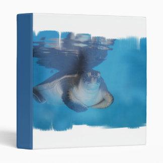 Carpeta de la tortuga de mar del bebé