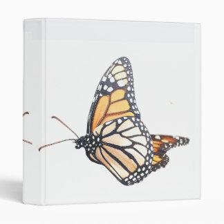 Carpeta de las mariposas