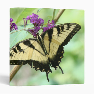 Carpeta de las mariposas de Swallowtail