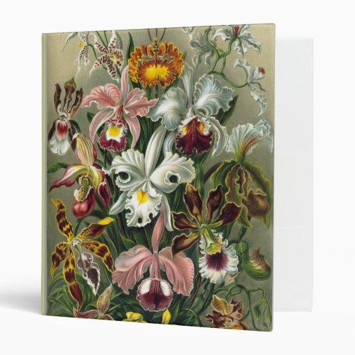 Carpeta de las orquídeas