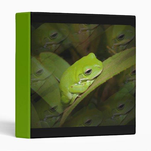 Carpeta de las reflexiones de la rana