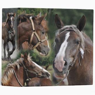 carpeta de los caballos