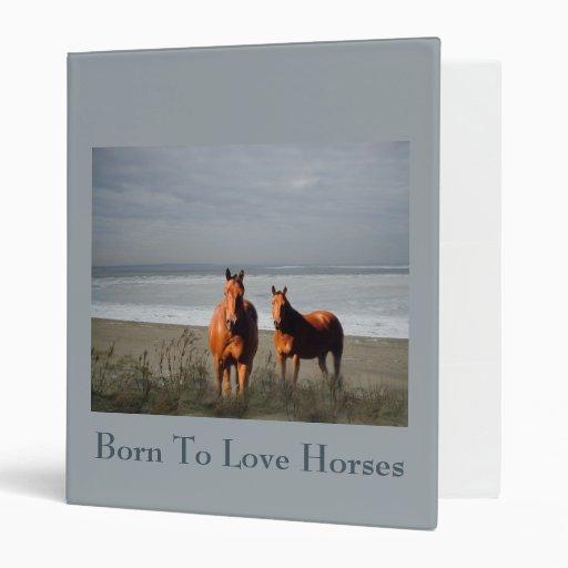 Carpeta de los caballos de la playa