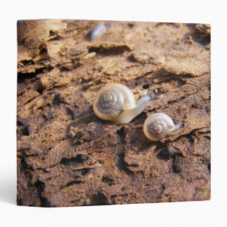Carpeta de los caracoles de bebé