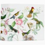 Carpeta de los colibríes de Goulds