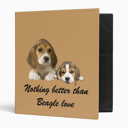 Carpeta de los compinches del beagle