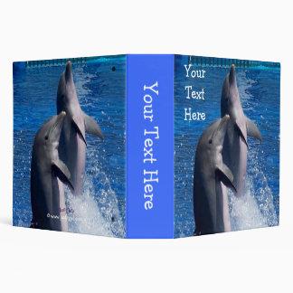 Carpeta de los delfínes
