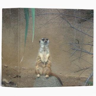 Carpeta de Meerkat