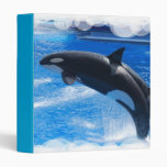 Carpeta de salto de la ballena de la orca
