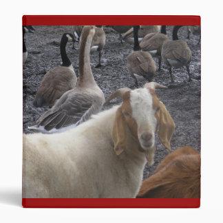 Carpeta del álbum de foto de la cabra del corral