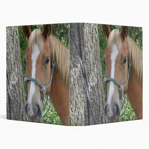 Carpeta del caballo