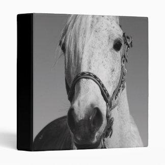 Carpeta del caballo blanco