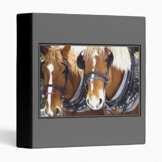 Carpeta del caballo de proyecto de Clydesdale