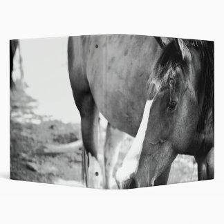 """Carpeta del """"caballo"""" del mejor amigo"""