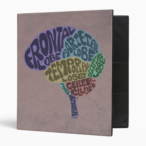 Carpeta del cerebro