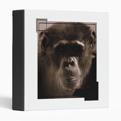 Carpeta del chimpancé
