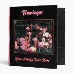Carpeta del flamenco