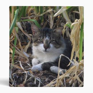 Carpeta del gatito