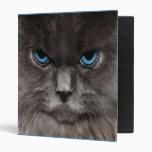 Carpeta del gato del guarda