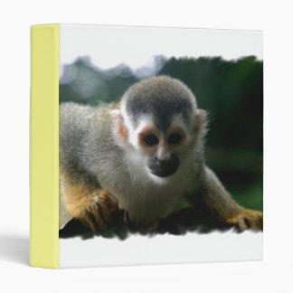 Carpeta del mono de araña
