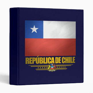 """Carpeta del """"orgullo chileno"""""""