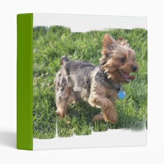 Carpeta del perro de York Terrier