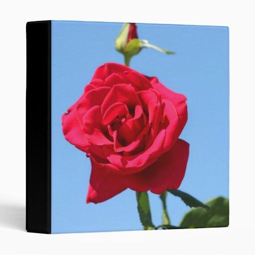 Carpeta del rosa rojo