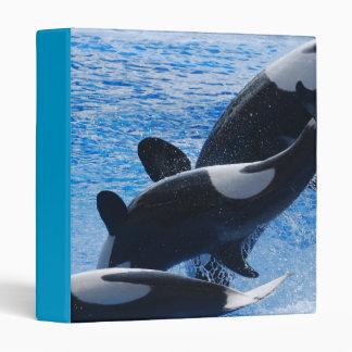 Carpeta del trío de la orca