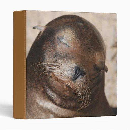 Carpeta dulce del león marino
