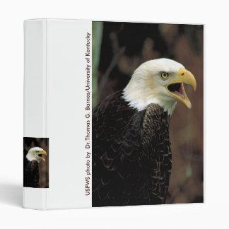 Carpeta/Eagle calvo llamada