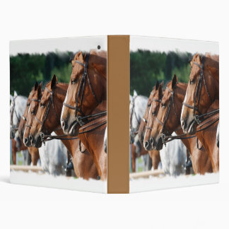 Carpeta equina de la demostración del caballo