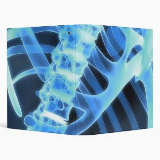 Carpeta esquelética de la radiografía