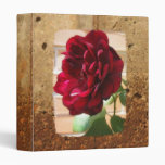 Carpeta gris del cemento del rosa rojo