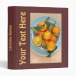Carpeta hermosa de la comida con las clementinas
