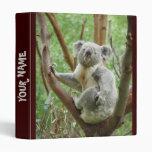 Carpeta linda de la koala