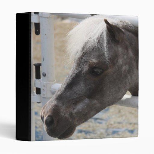 Carpeta miniatura del caballo