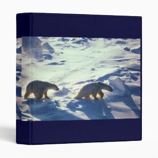 Carpeta osos polares en el cabo Lisburne