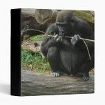 Carpeta pensativa del gorila