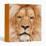Carpeta principal de Avery del león