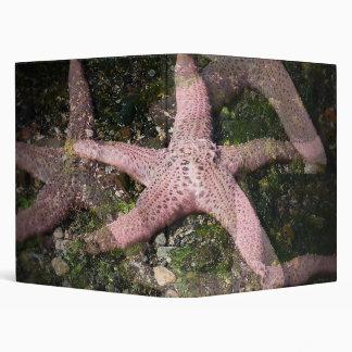 Carpeta rosada de Avery de las estrellas de mar