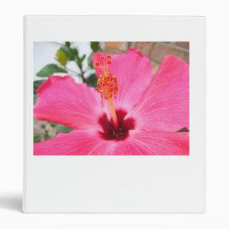 Carpeta rosada del hibisco