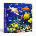 Carpeta subacuática 5 y 6