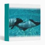 Carpeta subacuática de las ballenas