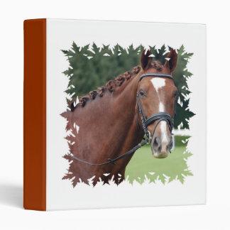 Carpeta trenzada de la melena del caballo
