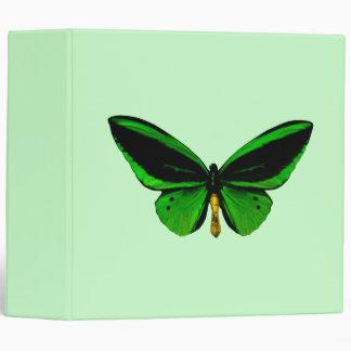 Carpeta verde de la mariposa