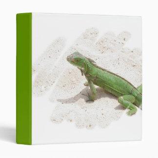 Carpeta verde del lagarto de la iguana