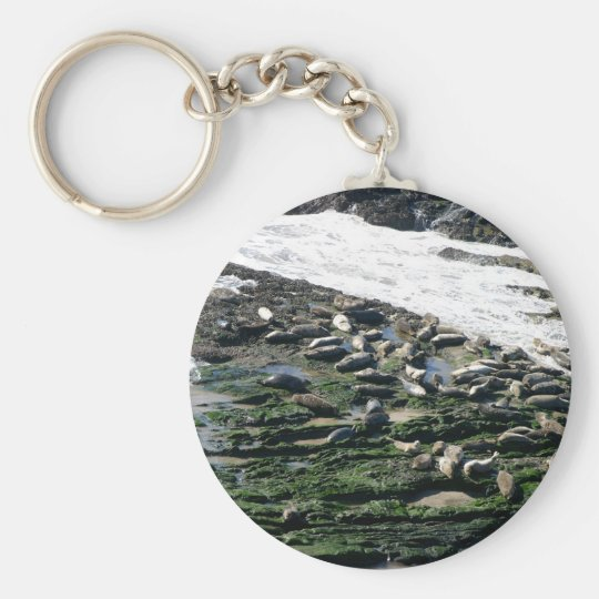 Carpinteria Seal Sanctuary Keychain